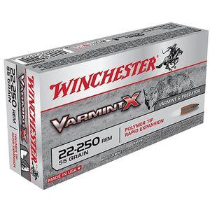 Winchester Varmint X .22-250 Remington Ammunition 40 Rounds, PT, 55 Grains