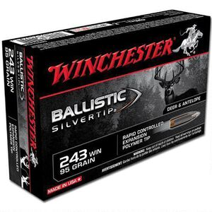 Winchester Silvertip .243 Win Ammunition 20 Rounds, BST, 95 Grains