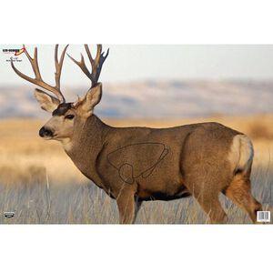 "Birchwood Casey Eze Scorer ""Mule Deer"" Paper Target 23"" x 35"" 2 Pack 37482"