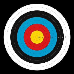"Dura Mesh Archery Target FITA Bulls-Eye Target 30""x30"""