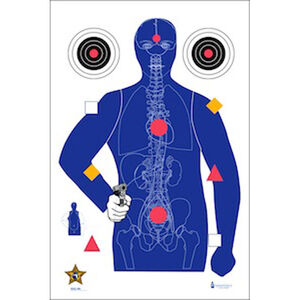 """Action Target Sarasota Co. (FL) Sheriff's Office Modified B-21E Target with Vital Anatomy 23"""" x 35"""" Paper Target Blue Gold Black Red 100 Pack"""