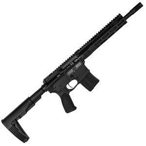 "Wilson Combat Protector Elite 5.56 NATO AR-15 Semi Auto Pistol 11.3"" Barrel 20 Rounds 10"" M-LOK Free Float Hand Guard Gear Head Works Tailhook Matte Black"