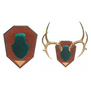 Allen Antler Mounting Kit Green