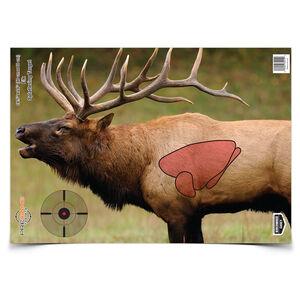 "Birchwood Casey PREGAME Elk Target 16.5"" x 24"" 3 Pack"