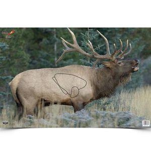 "Birchwood Casey Eze Scorer ""Elk"" Paper Target 23""x35"" 2 Pack 37485"