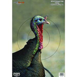 "Birchwood Casey Pregame Splattering Animal Target 12""x18"" Turkey 8 Pack 35403"