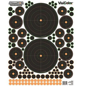 """Champion Traps & Targets VisiColor Adhesive Reactive Bullseye Target 16""""x20.5"""" with Pasters 5 Pack"""