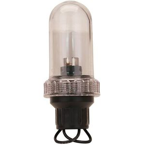 "General Purpose Light, 3/4"" IPT Base, Clear"