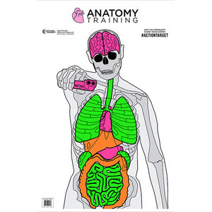 """Action Target Anatomy Training Target 23"""" x 35"""" Silhouette/Vitals Fluorescent 100 Count"""