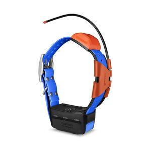 Garmin Astro 900 Dog Device GPS Collar