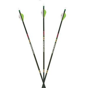 """Carbon Express Arrow Maxima Xrz 350 W/2"""" Rapt-X Vane 6pk"""