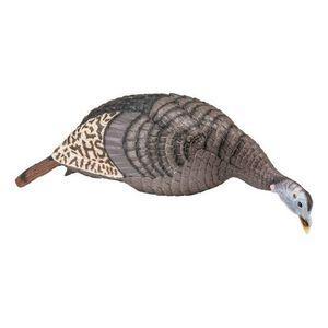 Hunter Specialties Strut-Lite Feeding Hen Decoy