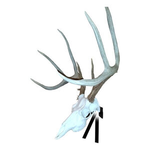 Mountain Mike's Positioner Deer Skull Wall Mount