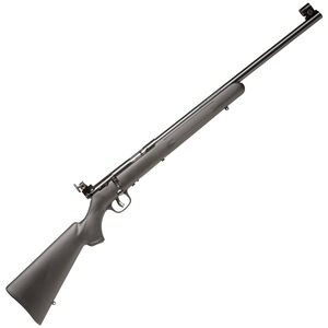 """Savage Mark II-FVT Bolt Action Rifle .22 LR 20.75"""" Barrel 5 Rounds Synthetic Stock Blued Finish 28800"""