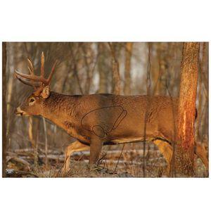 "Birchwood Casey EZ-Scorer Paper Targets Whitetail Deer Target 23""x35"" 2 Pack 37481"