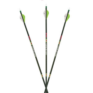 """Carbon Express Arrow Maxima Xrz 250 W/2"""" Rapt-X Vane 6pk"""