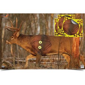 "Birchwood Casey Eze-Scorer Whitetail Target w/Shoot·N·C Overlays 23"" x 35"""