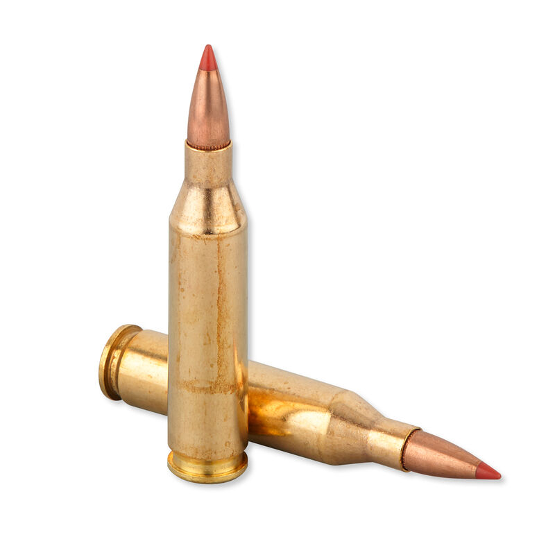 FIOCCHI .243 Winchester Ammunition 200 Rounds Hornady SST 95 Grains 243HSB