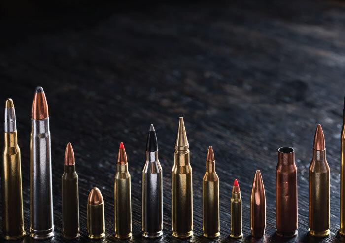 Choose a rifle cartridge