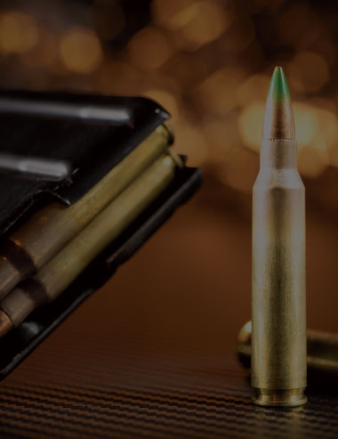 Discover .223 Rem ammo in stock