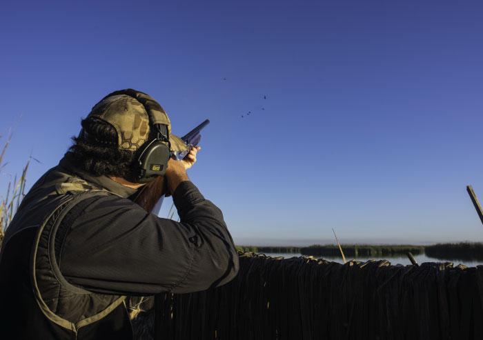 Bird hunting with a shotgun