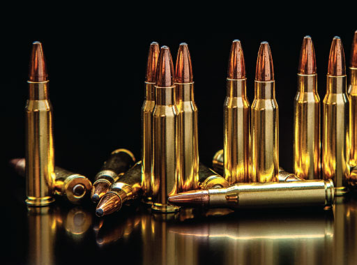 Ammunition - Shop Now