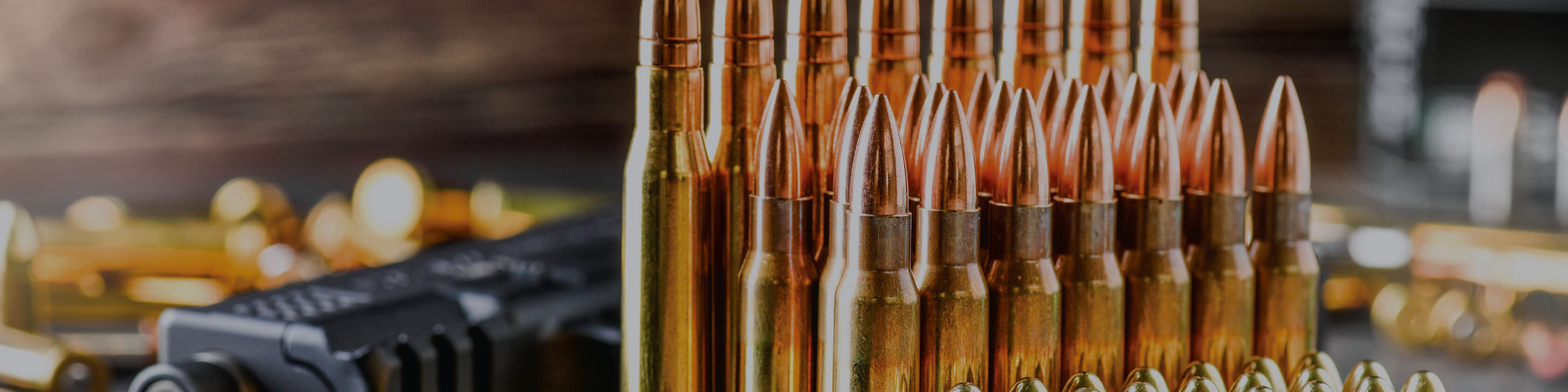 Find the right ammunition for your gun