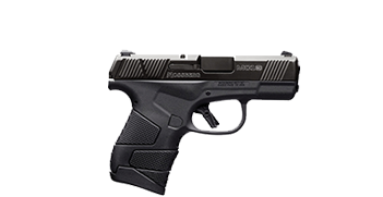 Guns under $350