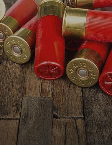 Load up on 12 Gauge ammo