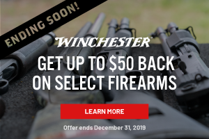 Winchester Holiday Rebate